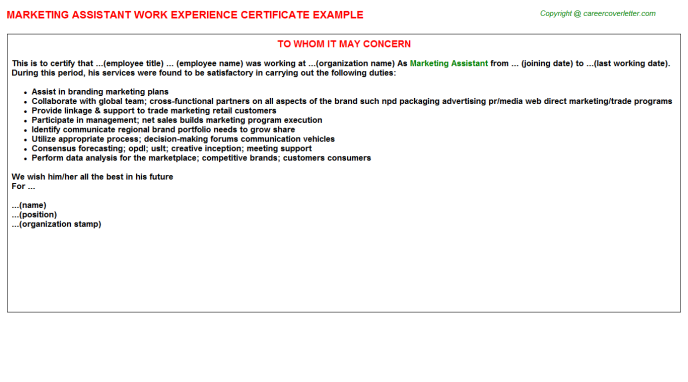 Marketing Assistant Experience Letter Template