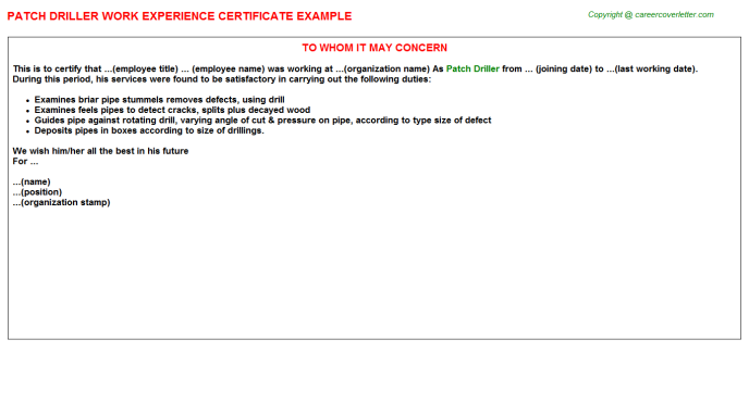 Patch Driller Experience Letter Template