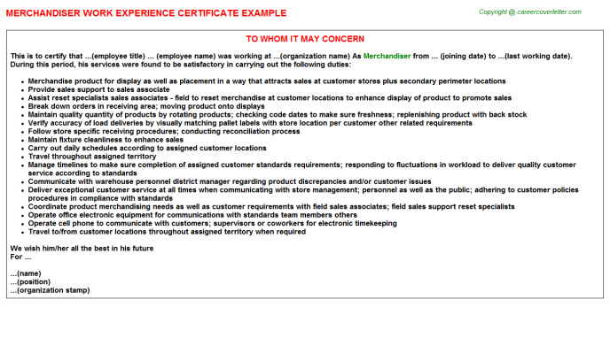 Merchandiser Experience Letter Template