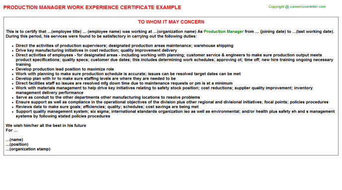 Production Manager Work Experience Letter