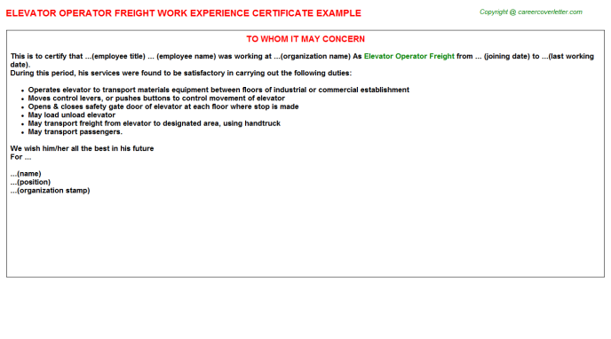 Freight Forwarders Experience Letters