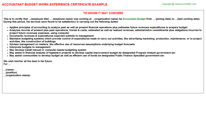 Accountant Budget Work Experience Certificate Template