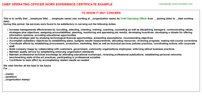 Chief Operating Officer Experience Letter Template