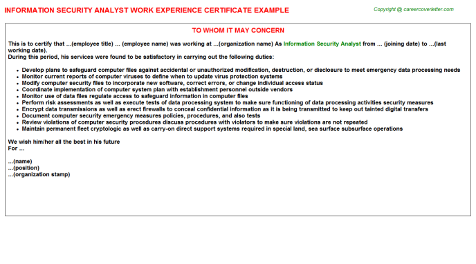 Information security analyst work experience letter (#24293)