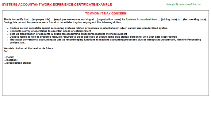 Systems Accountant Experience Letter Template