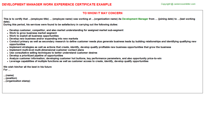 Development Manager Experience Letter Template