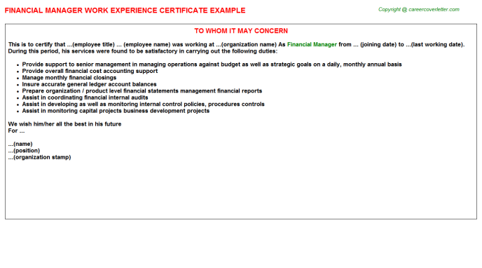 Financial Manager Experience Letter Template