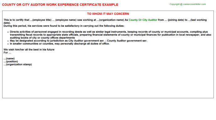 county or city auditor experience letter template