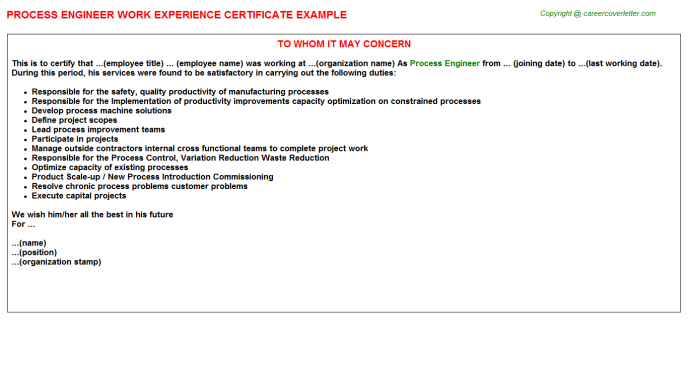 process engineer experience letter template