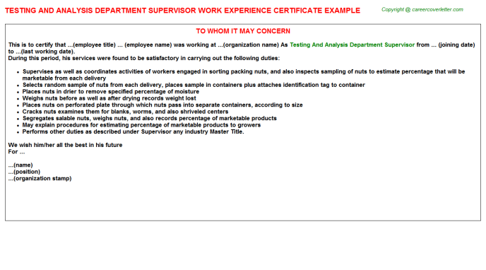 testing and analysis department supervisor experience letter template