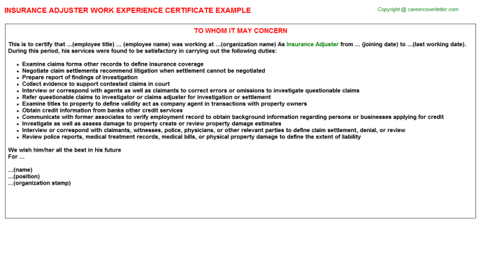 Insurance Adjuster Experience Letter