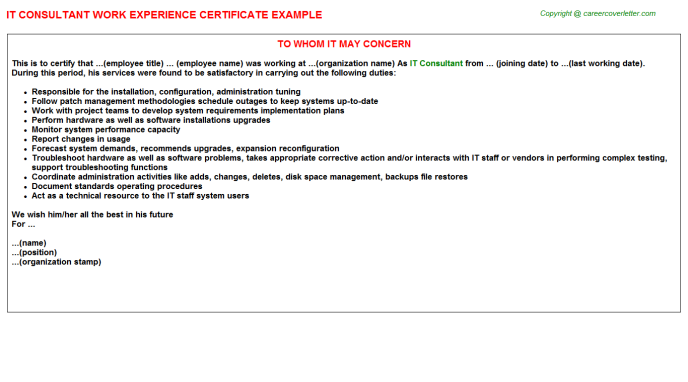 IT Consultant Experience Letter Template