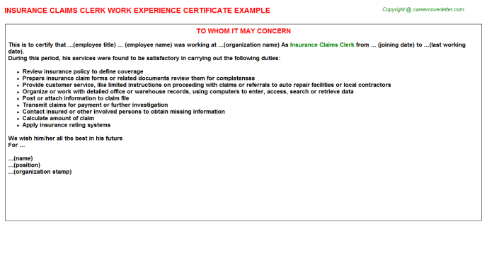 Insurance Claims Clerk Experience Letter Template