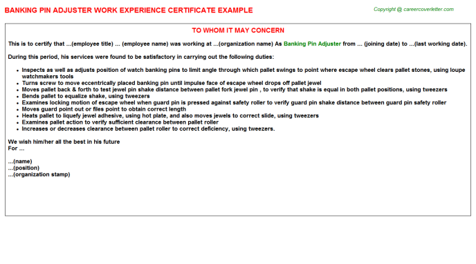 Banking Pin Adjuster Experience Letter Template