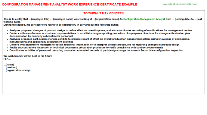 Configuration management analyst work experience letter (#320)