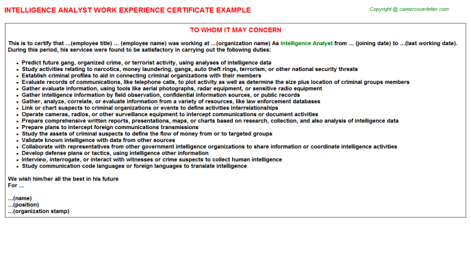 Intelligence Analyst Work Experience Letter