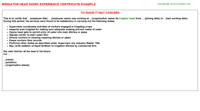 Irrigator Head Work Experience Certificate Template