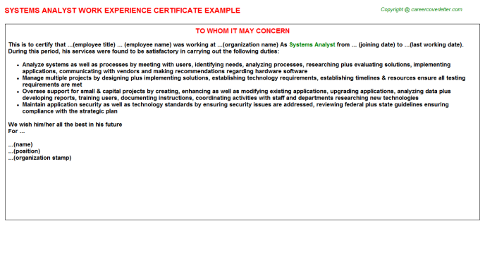 Systems Analyst Experience Letter Template
