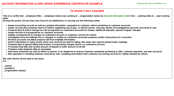 Account Information Clerk Work Experience Letter Template