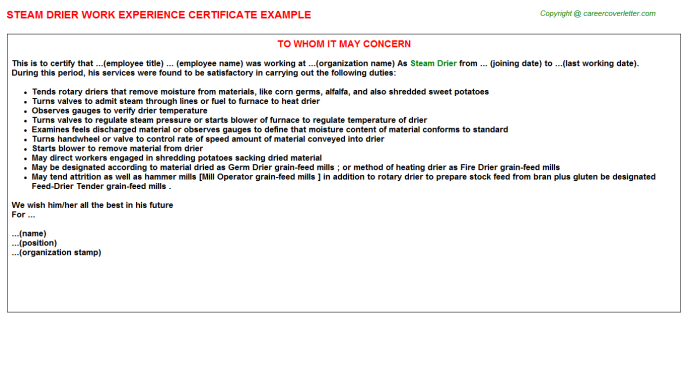 steam drier experience letter template