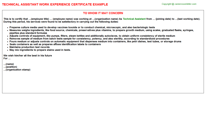 Technical Assistant Work Experience Certificate Template
