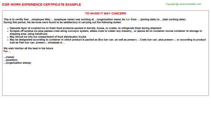 Icer Experience Letter Template