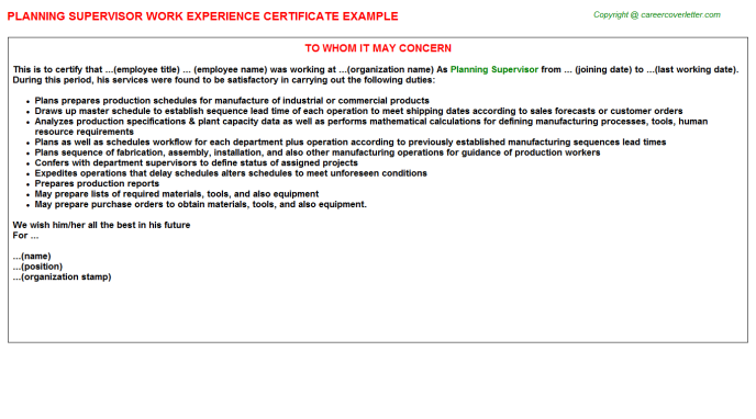 Planning Supervisor Experience Letter Template