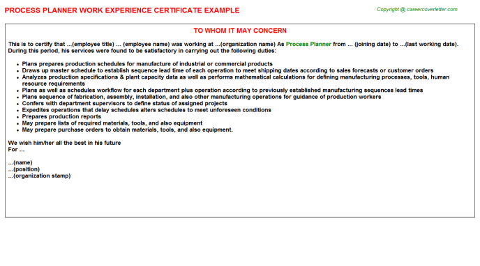 process planner experience letter template