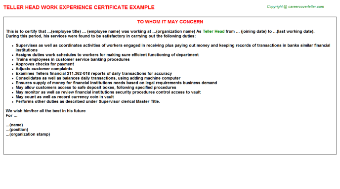teller head experience letter template