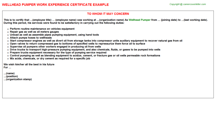 Wellhead Pumper Work Experience Letter Template
