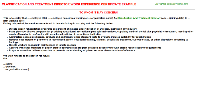 Classification And Treatment Director Experience Letter Template