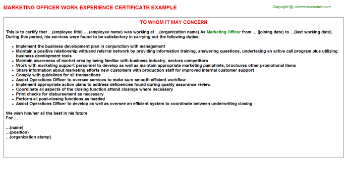 Marketing Officer Experience Letter Template