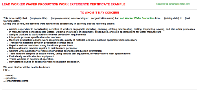 Lead Worker Wafer Production Experience Letter Template