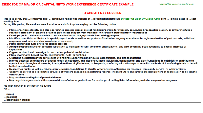 Director of major or capital gifts work experience letter (#1867)