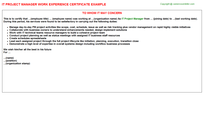 IT Project Manager Experience Letter Template
