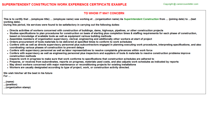 Construction Cost Controller Job Experience Letters Examples