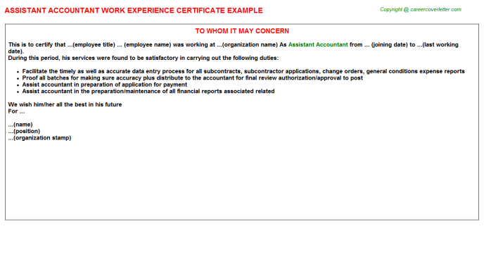 Assistant Accountant Work Experience Letter Template