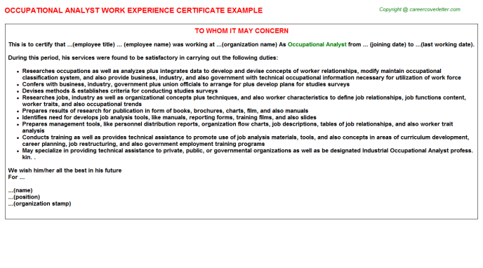 occupational analyst experience letter template
