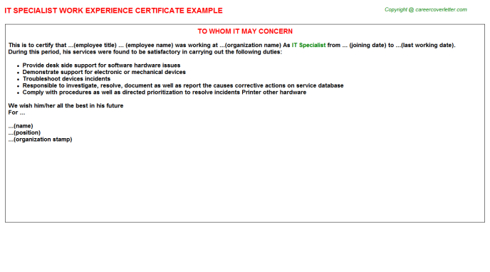 IT Specialist Experience Letter Template