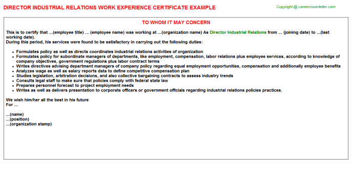 Director Industrial Relations Experience Letter Template