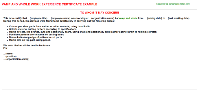 Vamp and whole Experience Letter Template