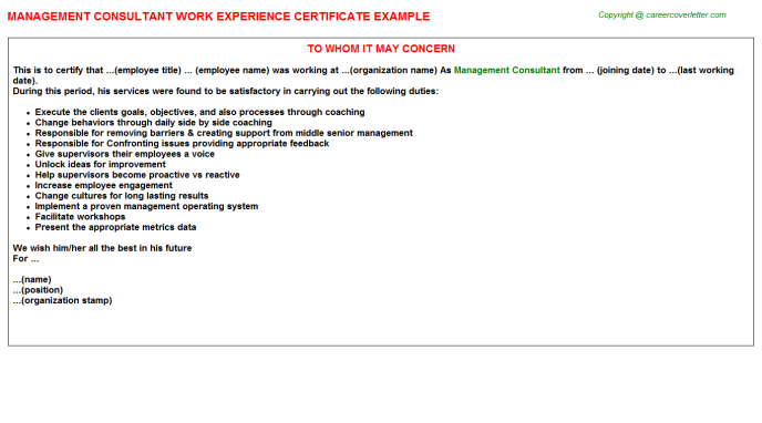 Management Consultant Experience Letter Template