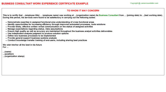 Business Consultant Experience Letter Template