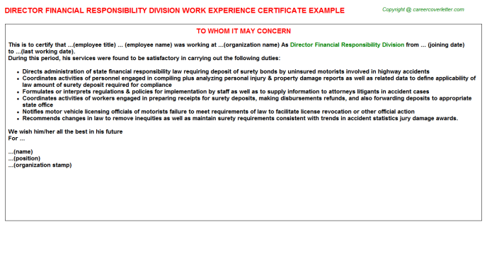 director financial responsibility division experience letter template