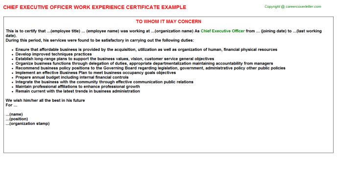 Chief Executive Officer Experience Letter Template