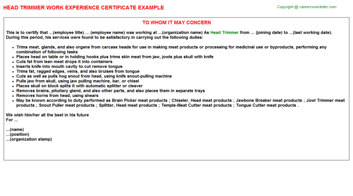 head trimmer experience letter template