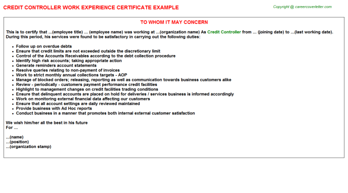 Credit Controller Experience Letter Template