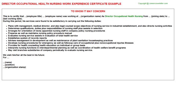 Director Occupational Health Nursing Experience Letter Template