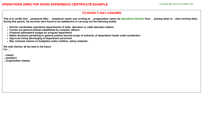 Operations Director Experience Letter Template