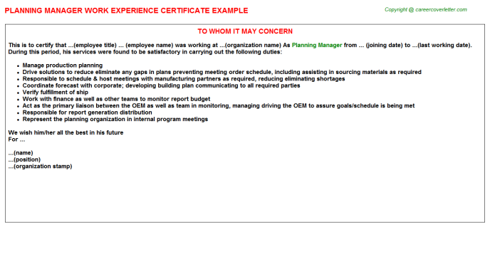 Planning Manager Experience Letter Template